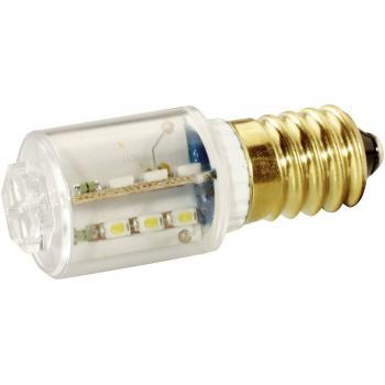 LED žarnica E14 topla bela 24 V/DC, 24 V/AC 14 mlm Signal Construct MBRE140854