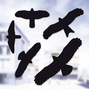 Odganjalec škodljivcev in živali Swissinno okenske nalepke, slike ptic 5-delni komplet